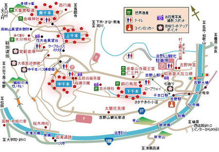 map_sakura.jpg
